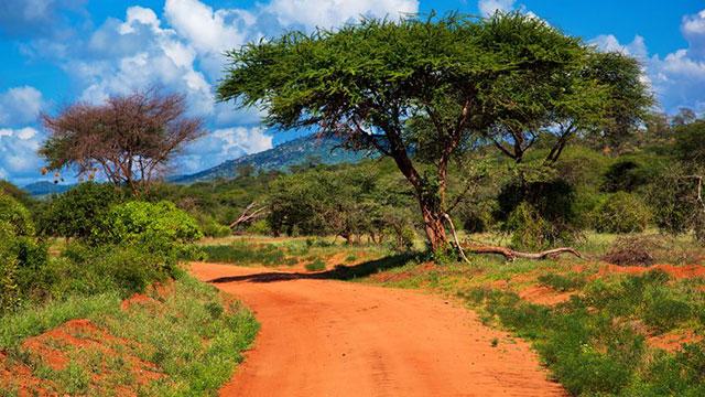 Sortie au parc national de Tsavo Ouest