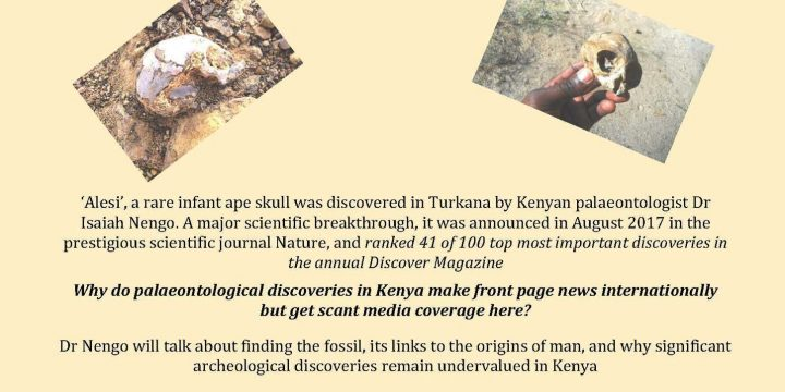 Découverte d'un fossile de singe de 13 millions d'années