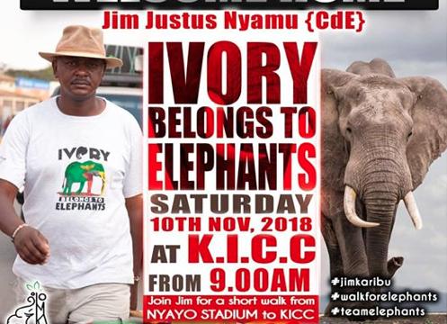 Walk for elephants
