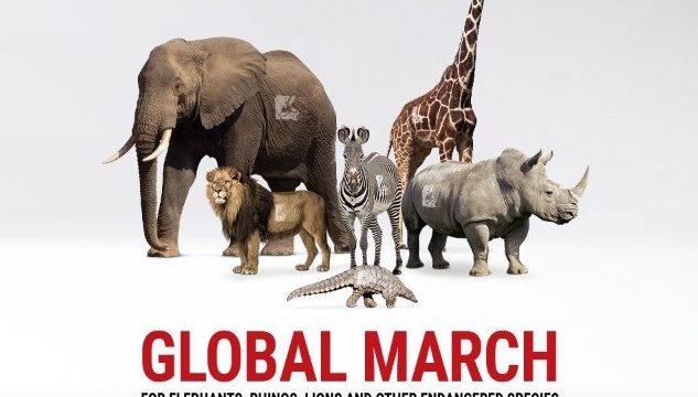 Marche pour les espèces en danger