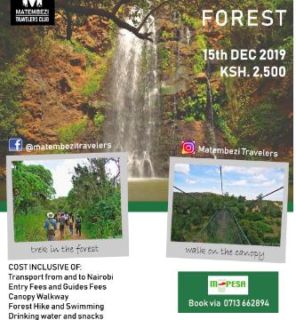Aventure dans la forêt de Ngare Ndare