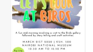 Regardons les oiseaux – Musée Nationale de Nairobi